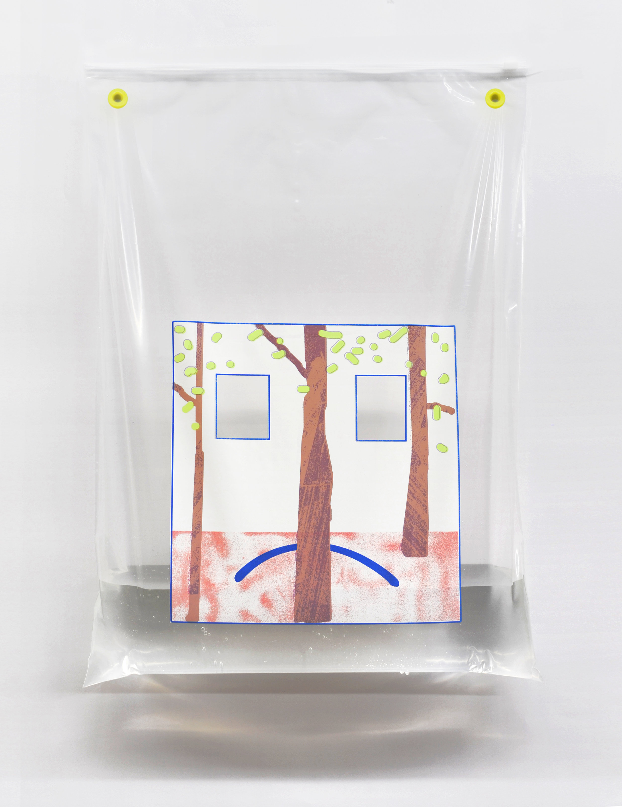"""Detail from the installation """"Gaussian Blur"""", 6-color screen print on polyethylene zip-bag by Sonnenzimmer, 2017, 24 x 18 inches"""