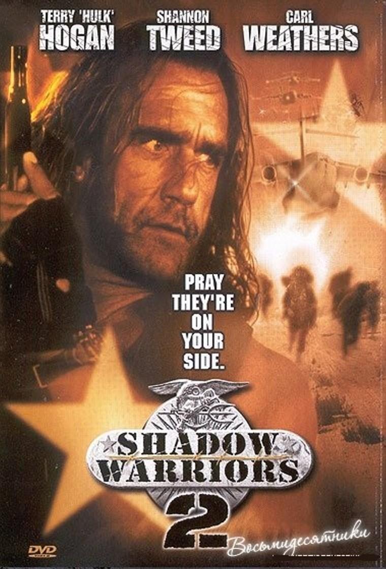 Shadow Warriors.jpg