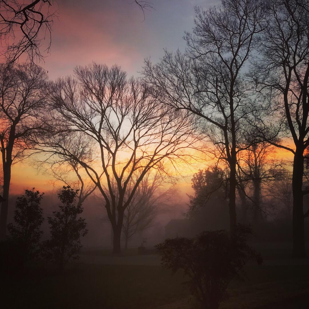 December dawn in Nashville