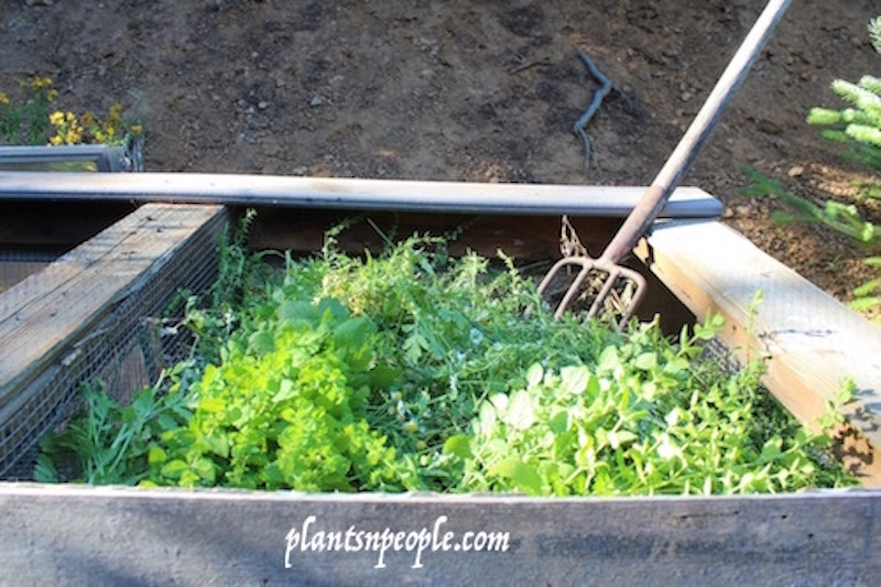 End of season herb trimmings are part of the green stuff added to a compost pile. I keep old hay and straw next to the bins to mix in with the green stuff.  I also shred used paper (cleaning out 30 years of paper files) and use that when I run out of hay/straw.