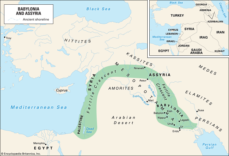 Grains and pulses were domesticated between 11,000-9000 years ago in the Fertile Crescent.