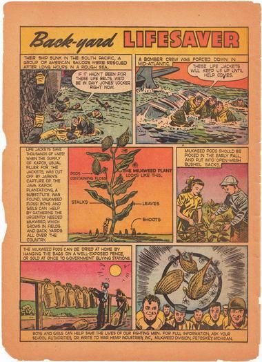 Educational and motivational comic used to encourage American children to collect mature seed pods. Photo: USDA/Conservation Service