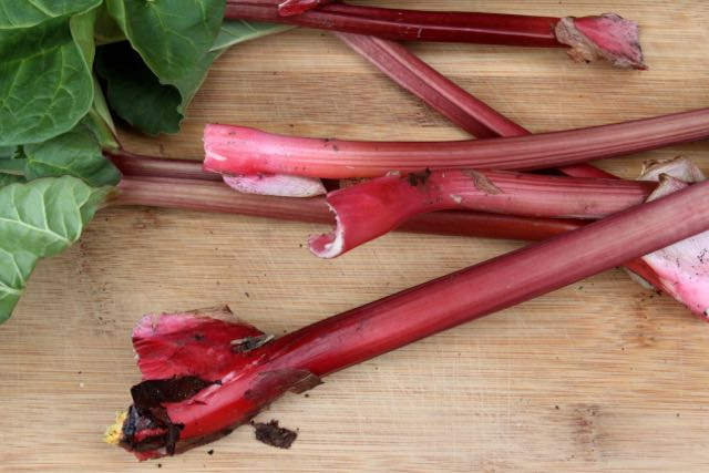 Pull and slightly twist off the mother plant;don't cut rhubarb.