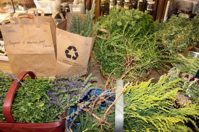 One of several herb harvests during the growing season