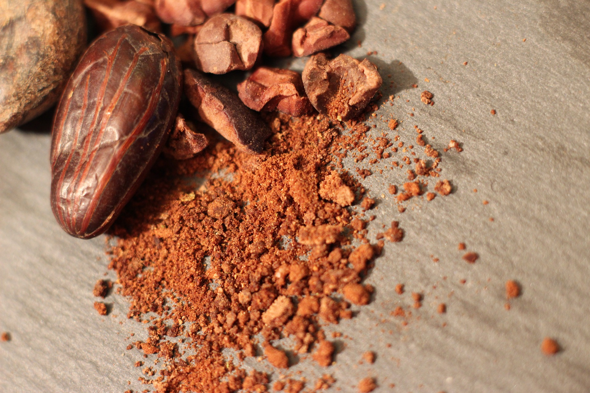 cocoa-powder 3005624_1920.jpg