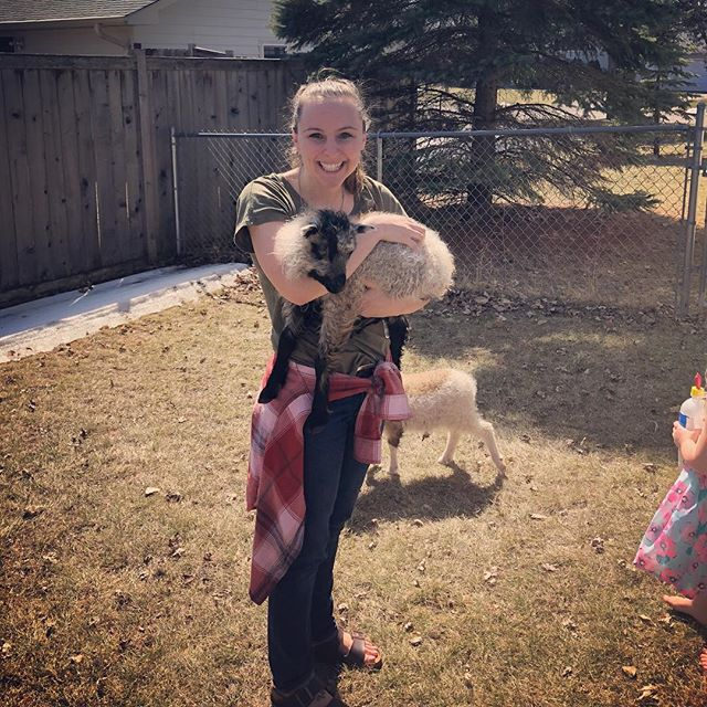 Currently questioning why I'm not holding a baby sheep still.