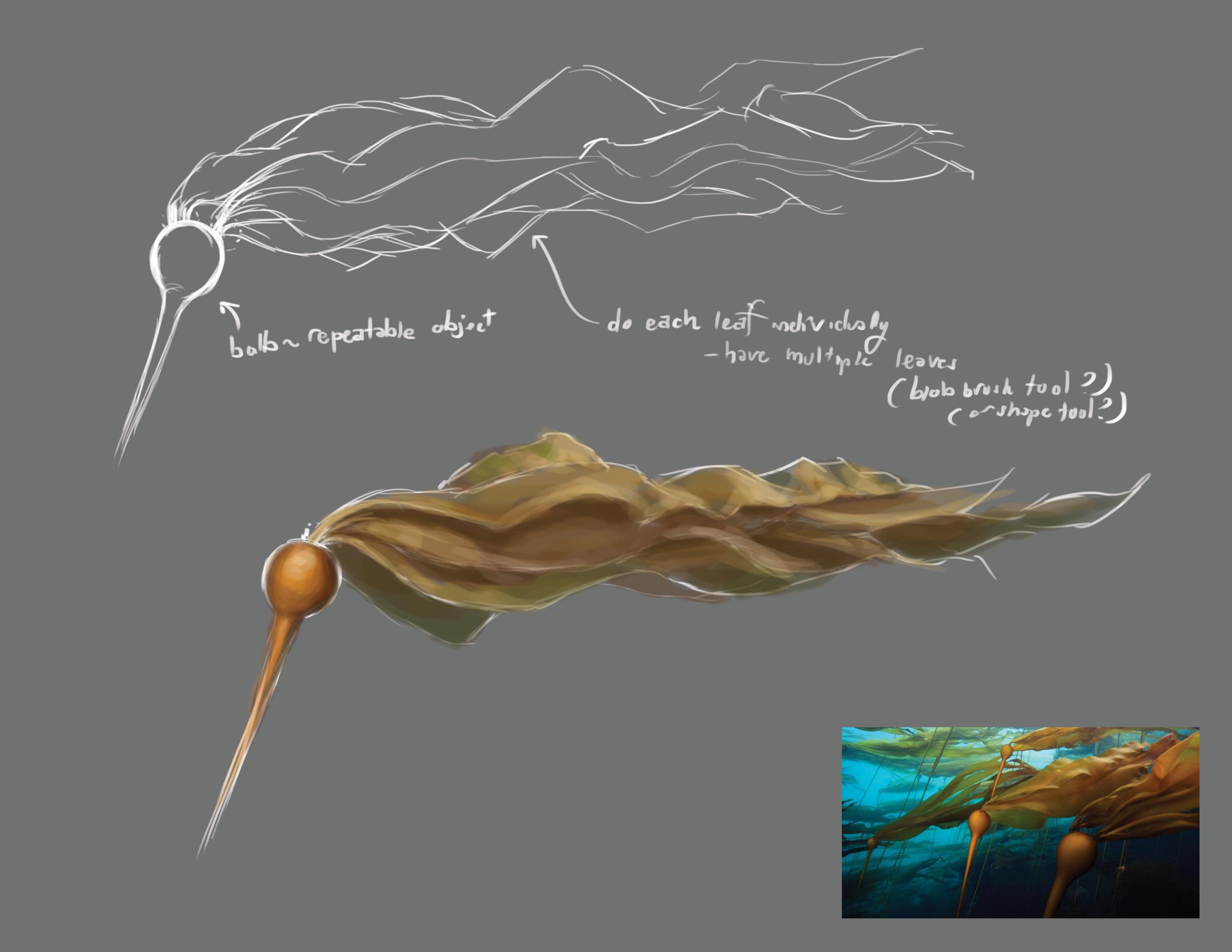 2 Kelp Draft.png