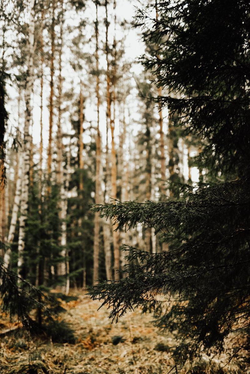 Linnsejphotography-brollopsfotograf-halmstad-vasteras-halland-brollop-brollopsinspo-brudklanning-brollopsfotografering-0028.jpg