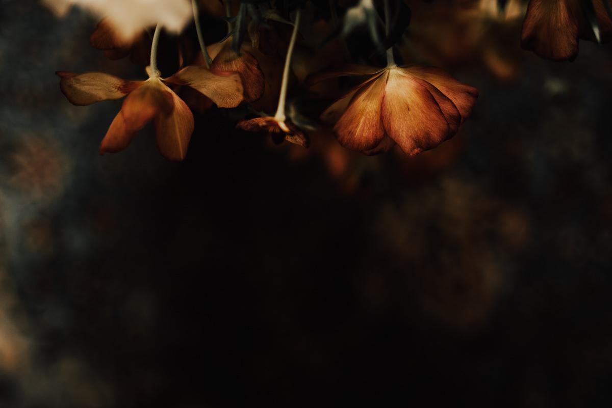 Linnsejphotography-brollopsfotograf-halmstad-vasteras-halland-brollop-brollopsinspo-brudklanning-brollopsfotografering-bohowedding-bohemiskt-lantligt-brollop-0022.jpg