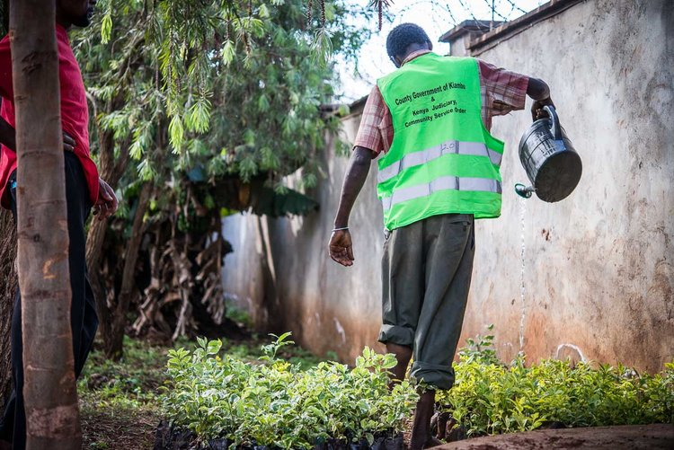 Community Service in Kenya