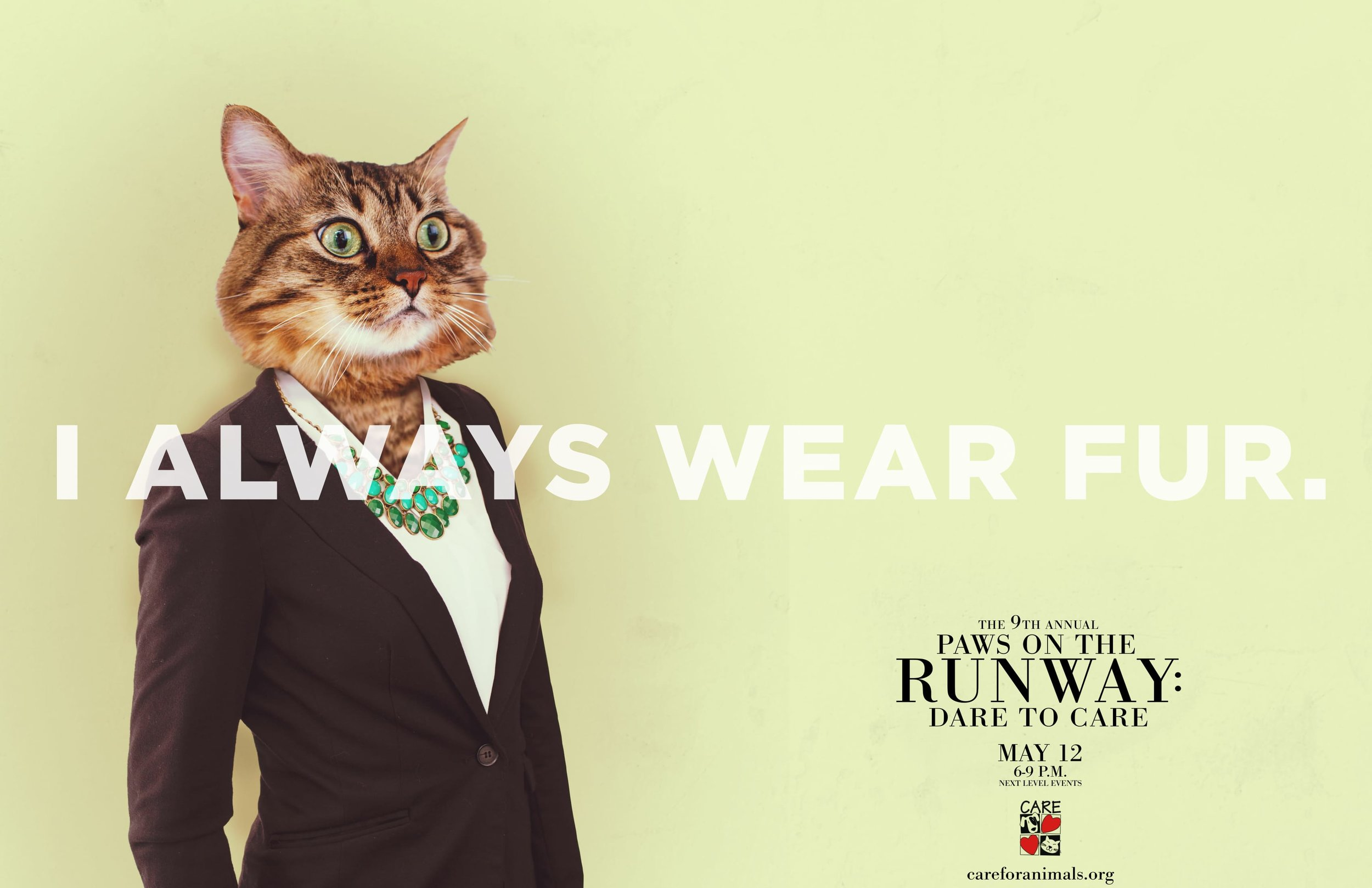 Paws on the Runway CAT FINAL pdf-1.jpg