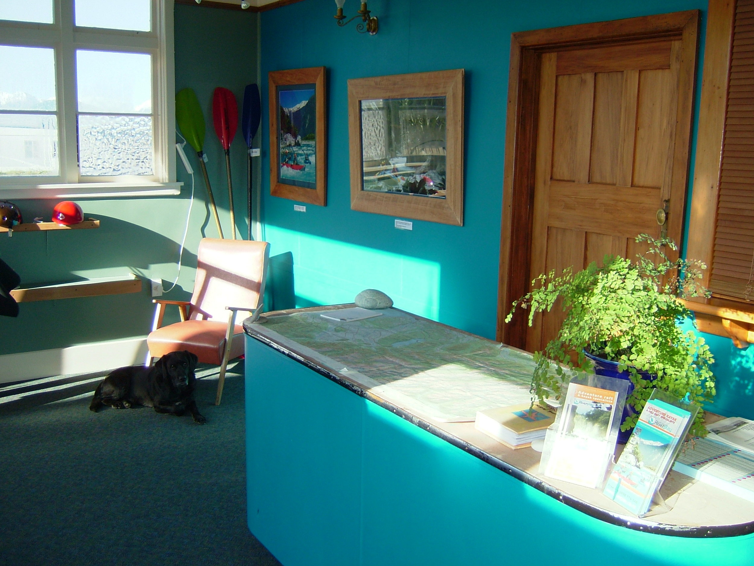 Riverplay headquarters, the southern alps peeking through the windows and Jett the rafting dog waiting for the punters.