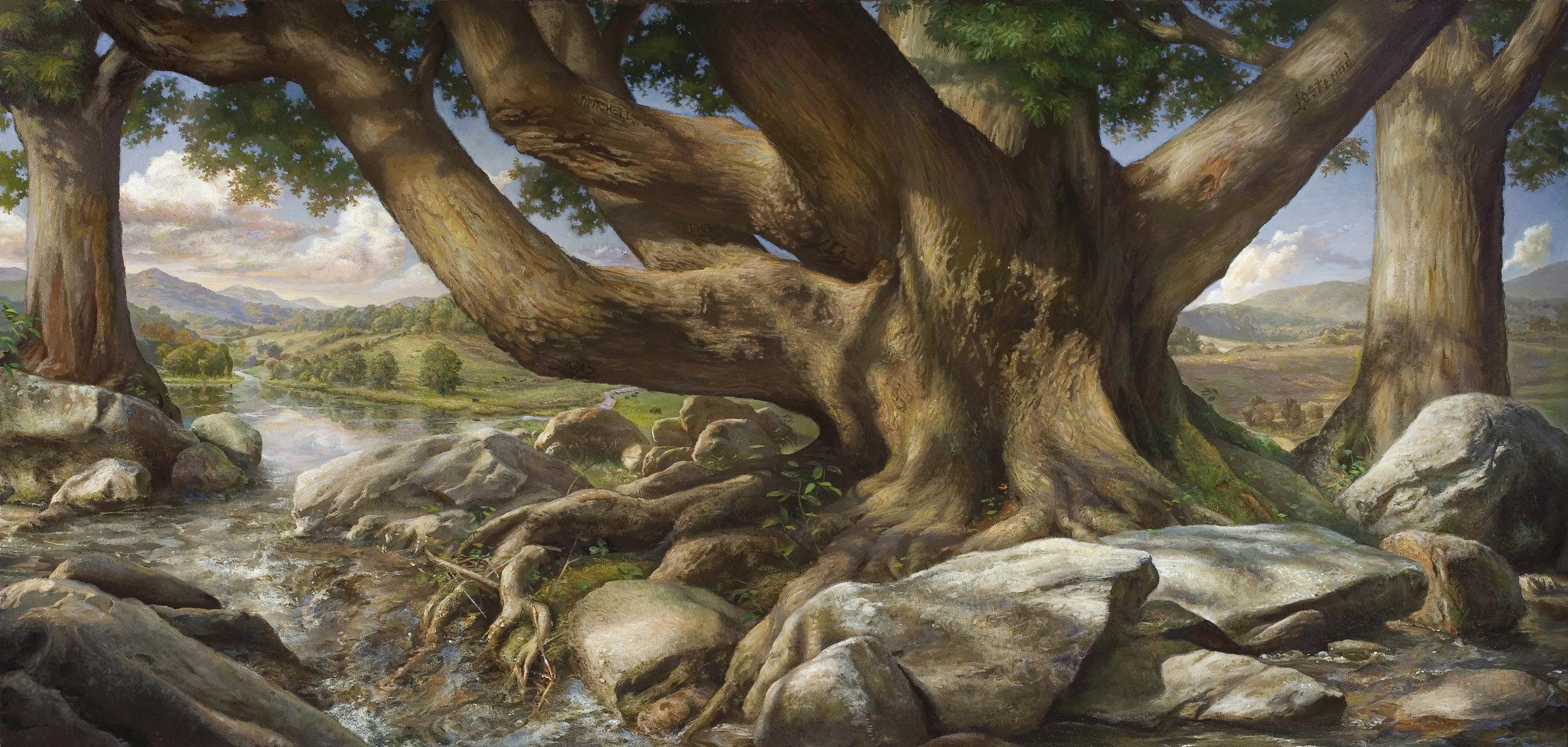 """The Chestnut Tree"""