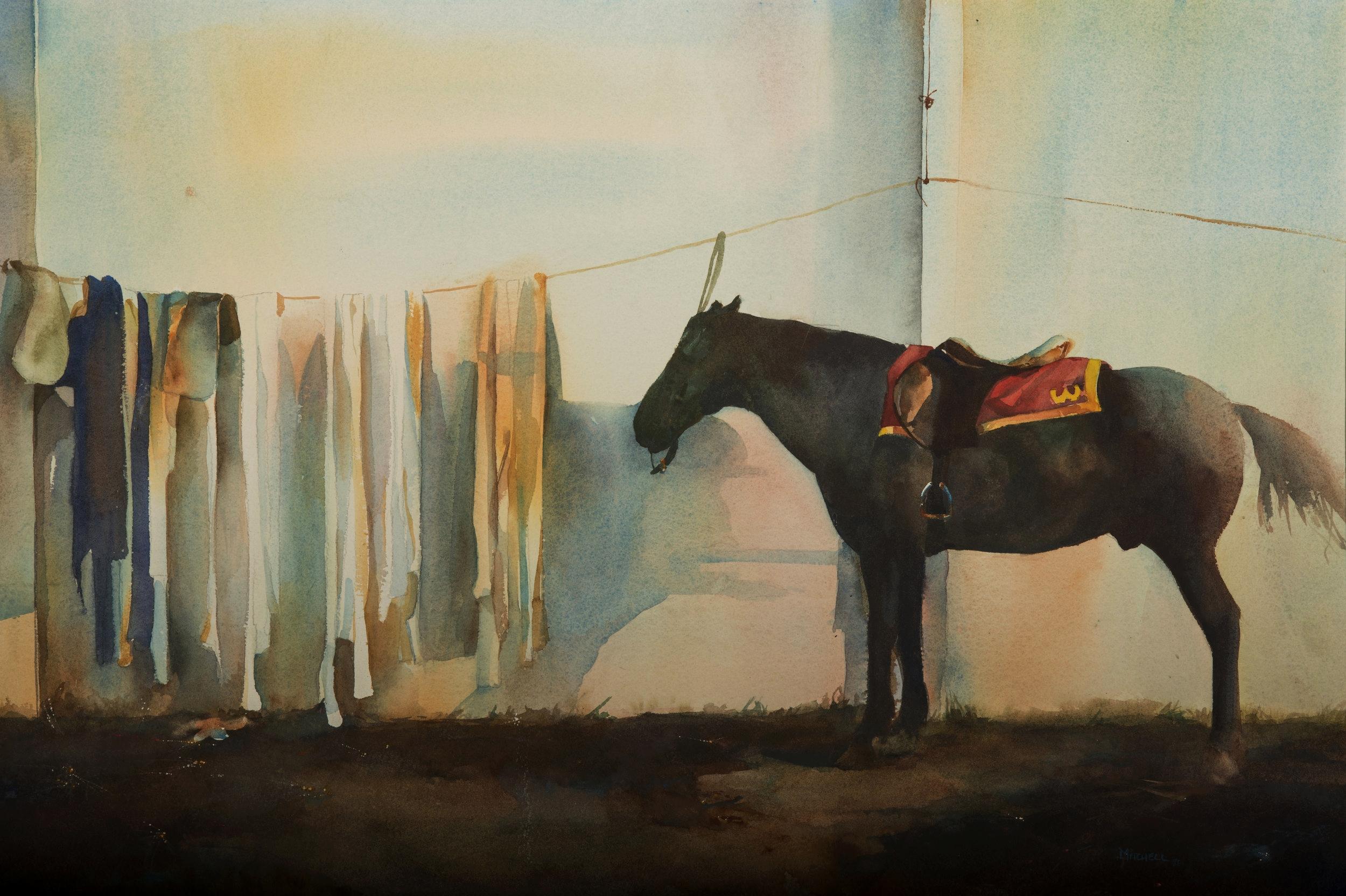 Horse at rest.jpg