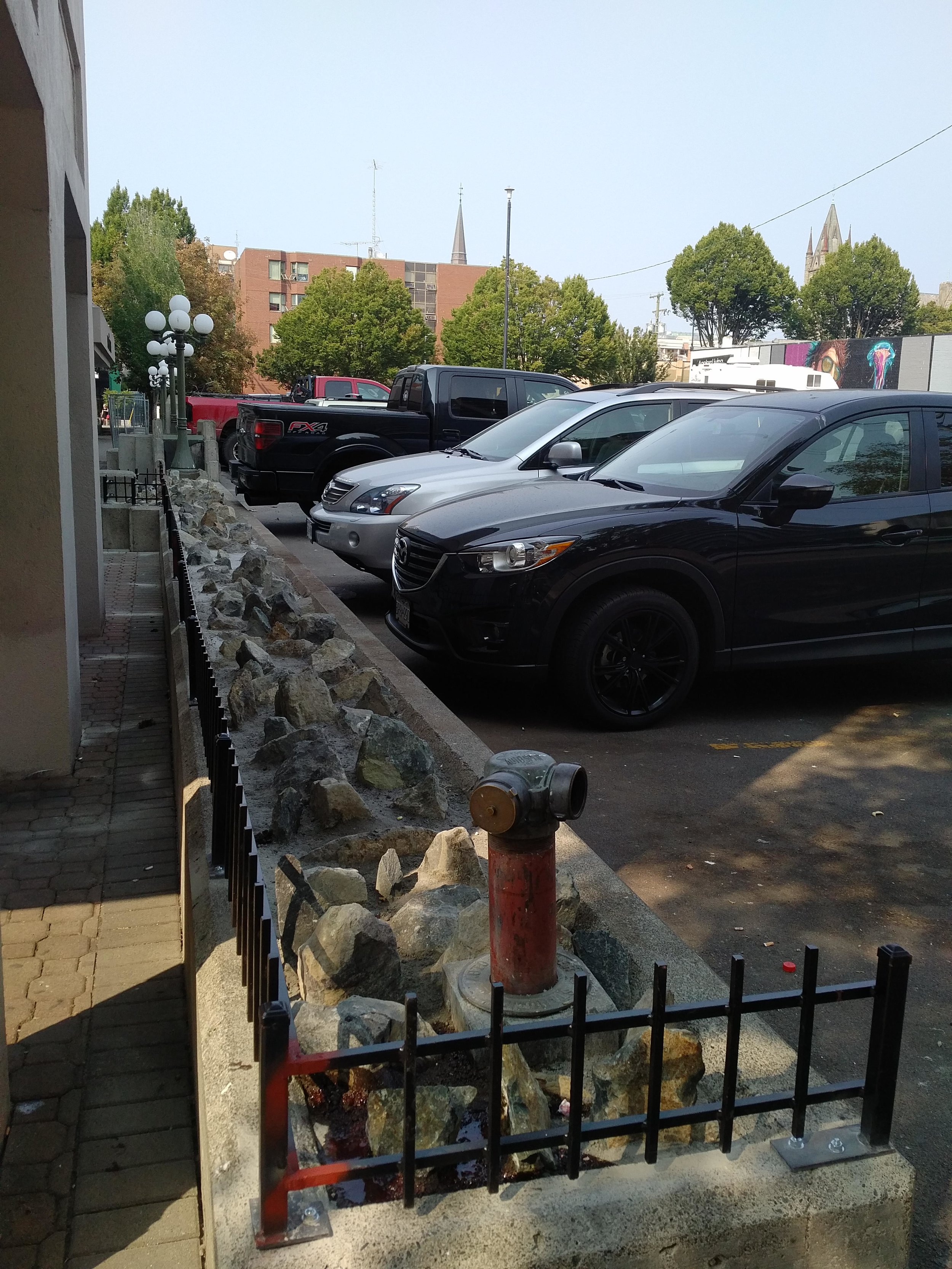 EAO Rocks and Fence 2.jpg