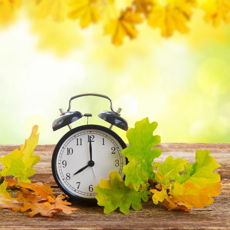 Fall time change.jpg