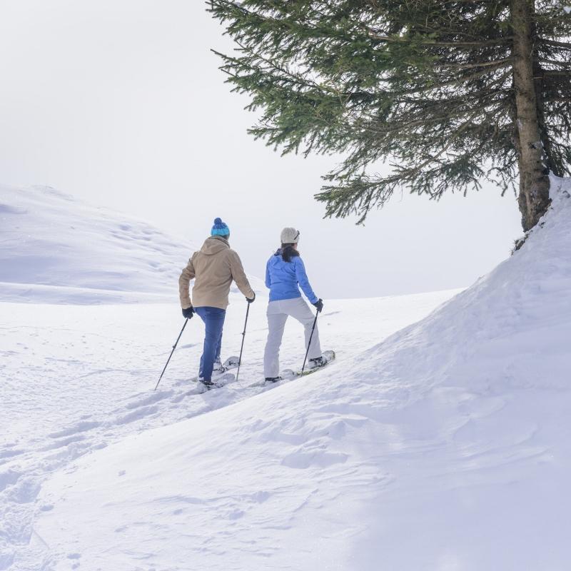 Winter Snowshoeing.jpg