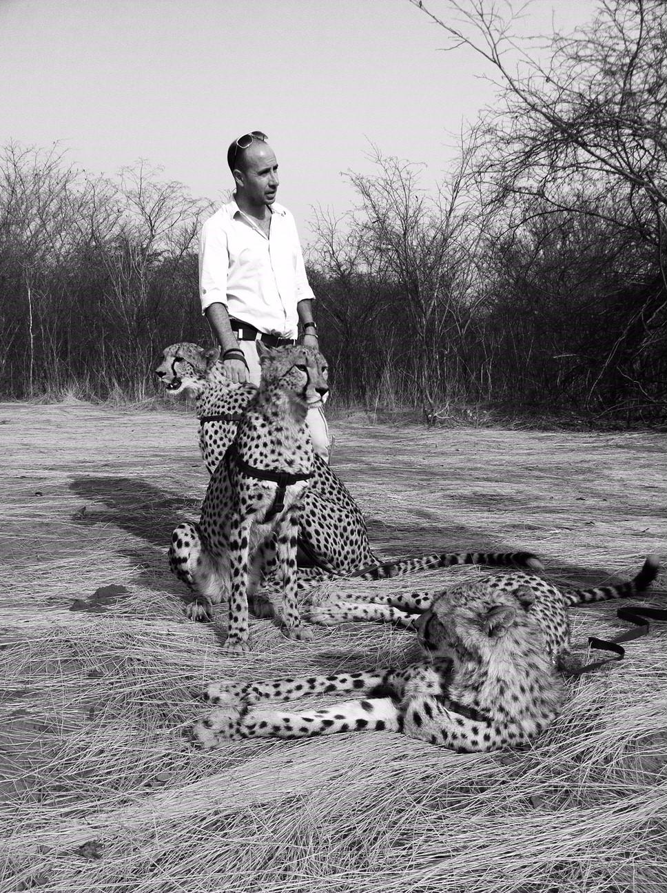 Sanctuary Lion Reserve, Zambia