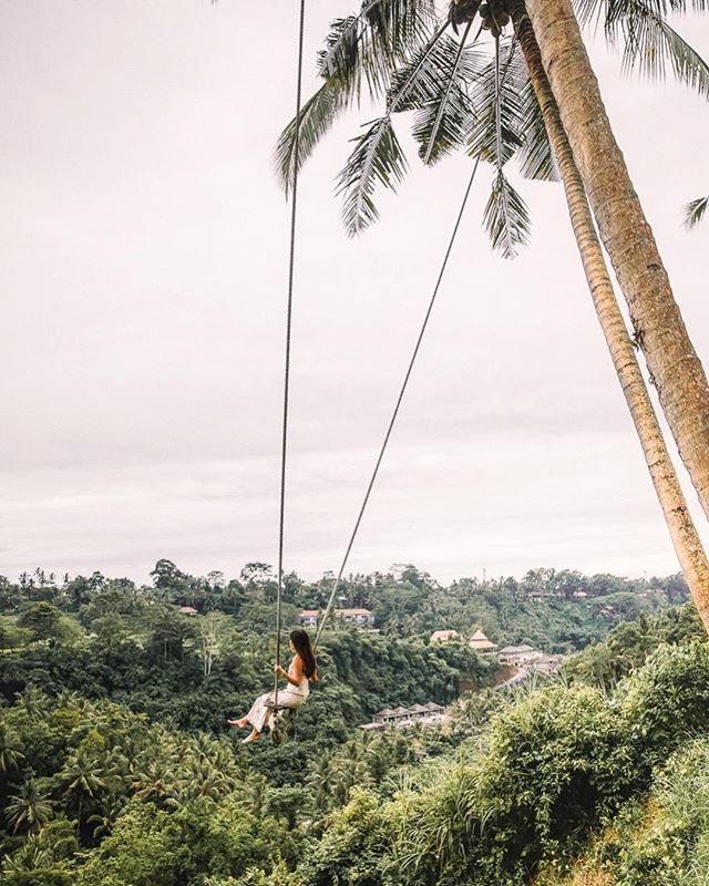 Thrilling experience swinging between the coconut trees🌴