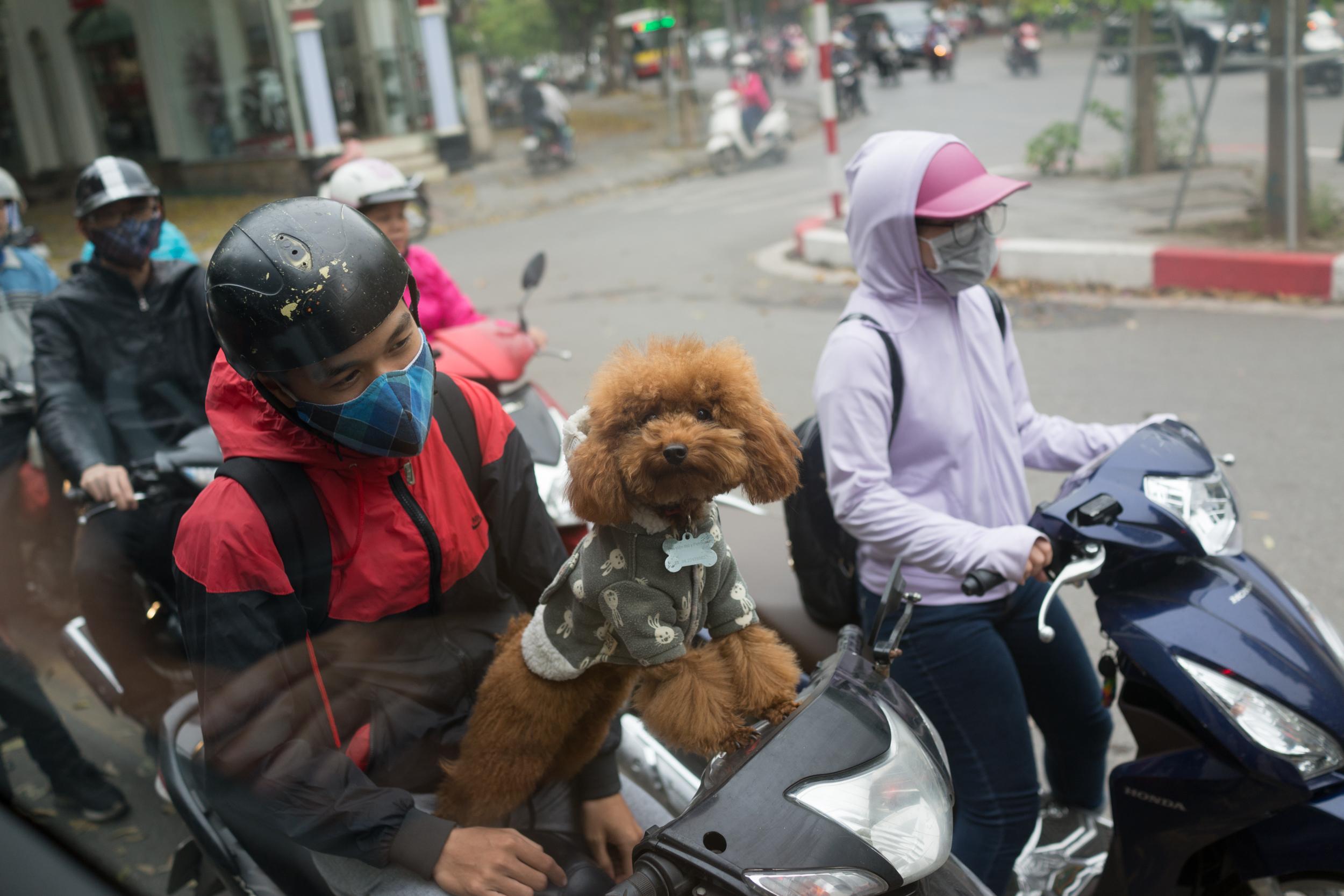 love-the-locals-vietnam-mai-chau-apr-2017_0003.JPG