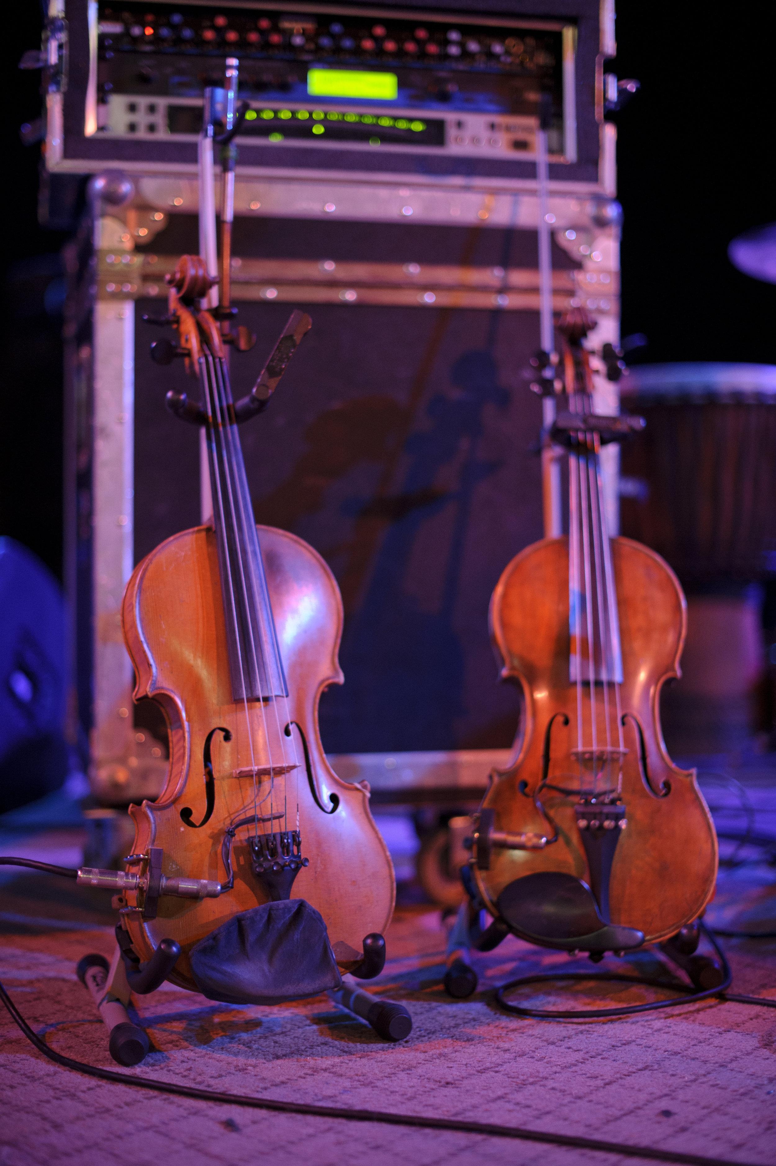 _DSC6364 violins.jpg