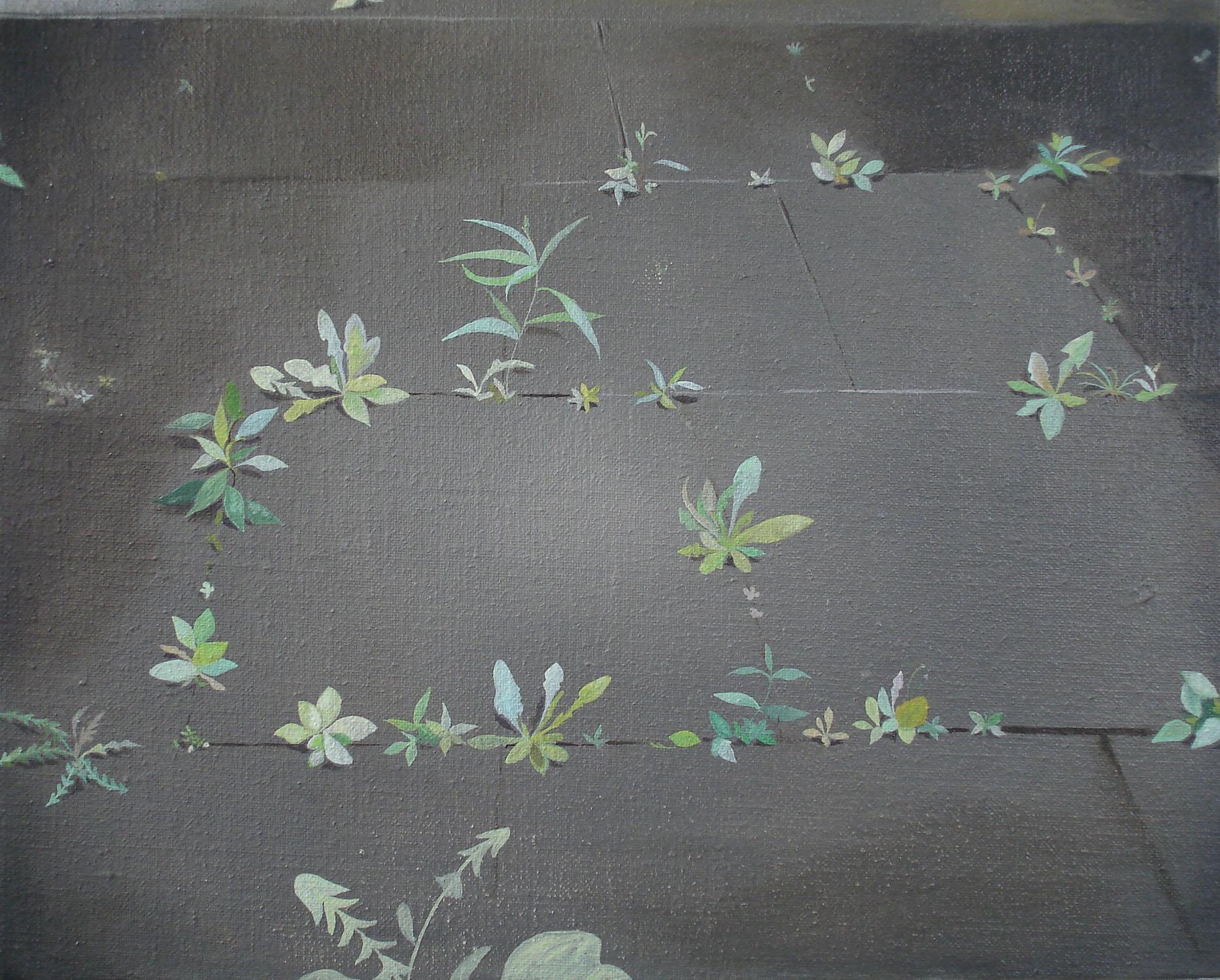 Birdseed    2005, oil on canvas, 24 x 30cm