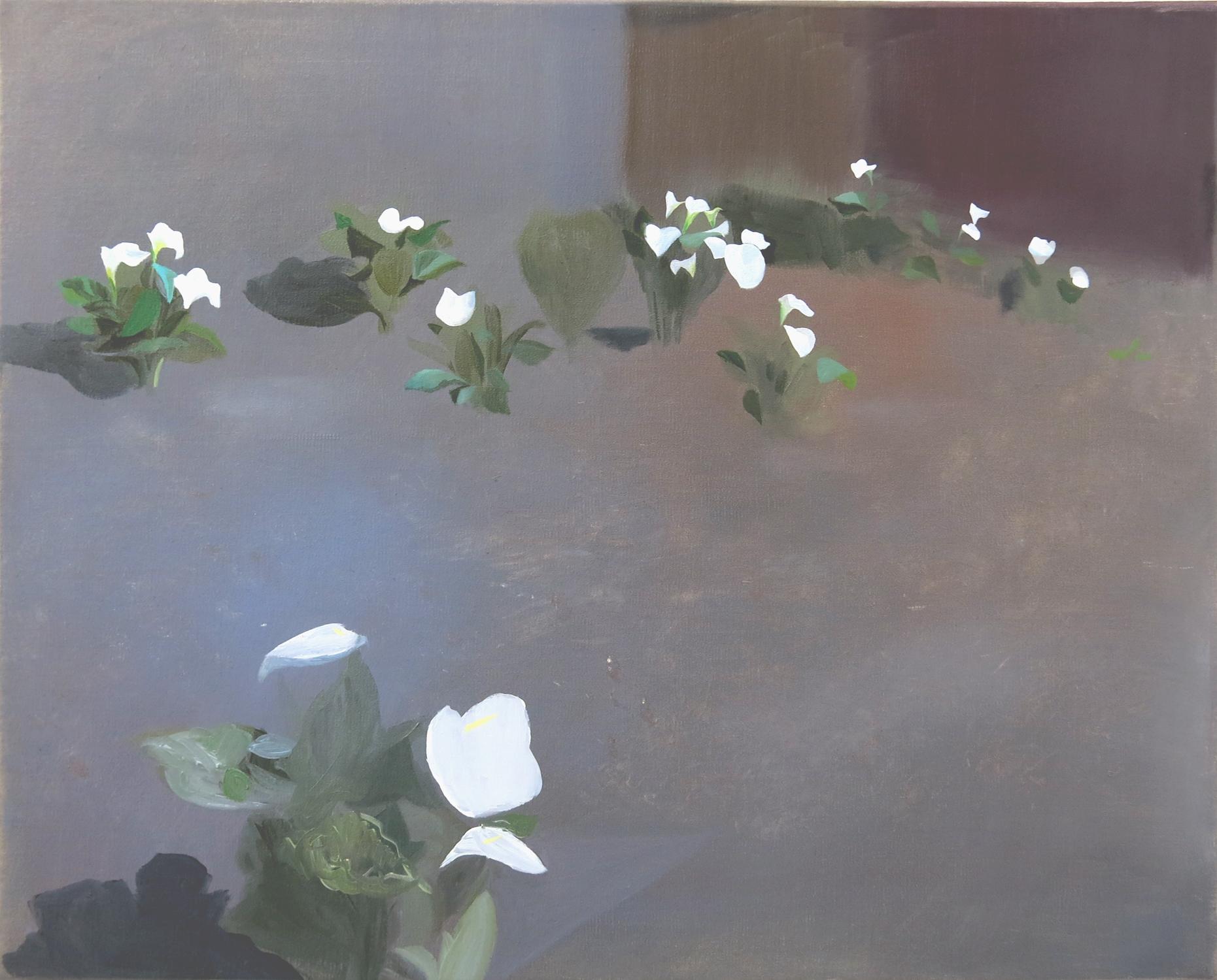 Lilies    2015, oil on canvas, 40 x 50cm