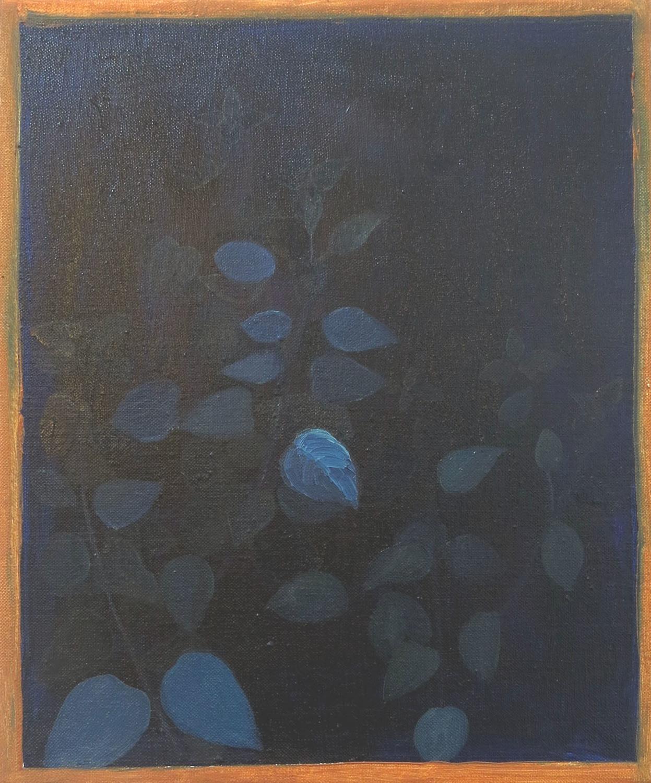 Window plant    2018, oil on canvas, 30 x 25cm