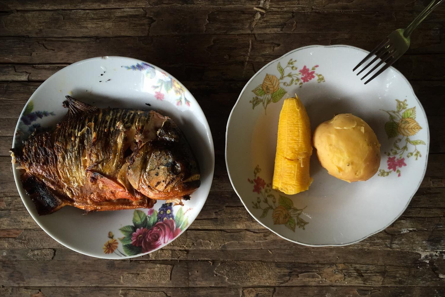 From the Amazon, Peru —     Killer Fish for Breakfast in the Amazon   (Read at  Roads & Kingdom s)