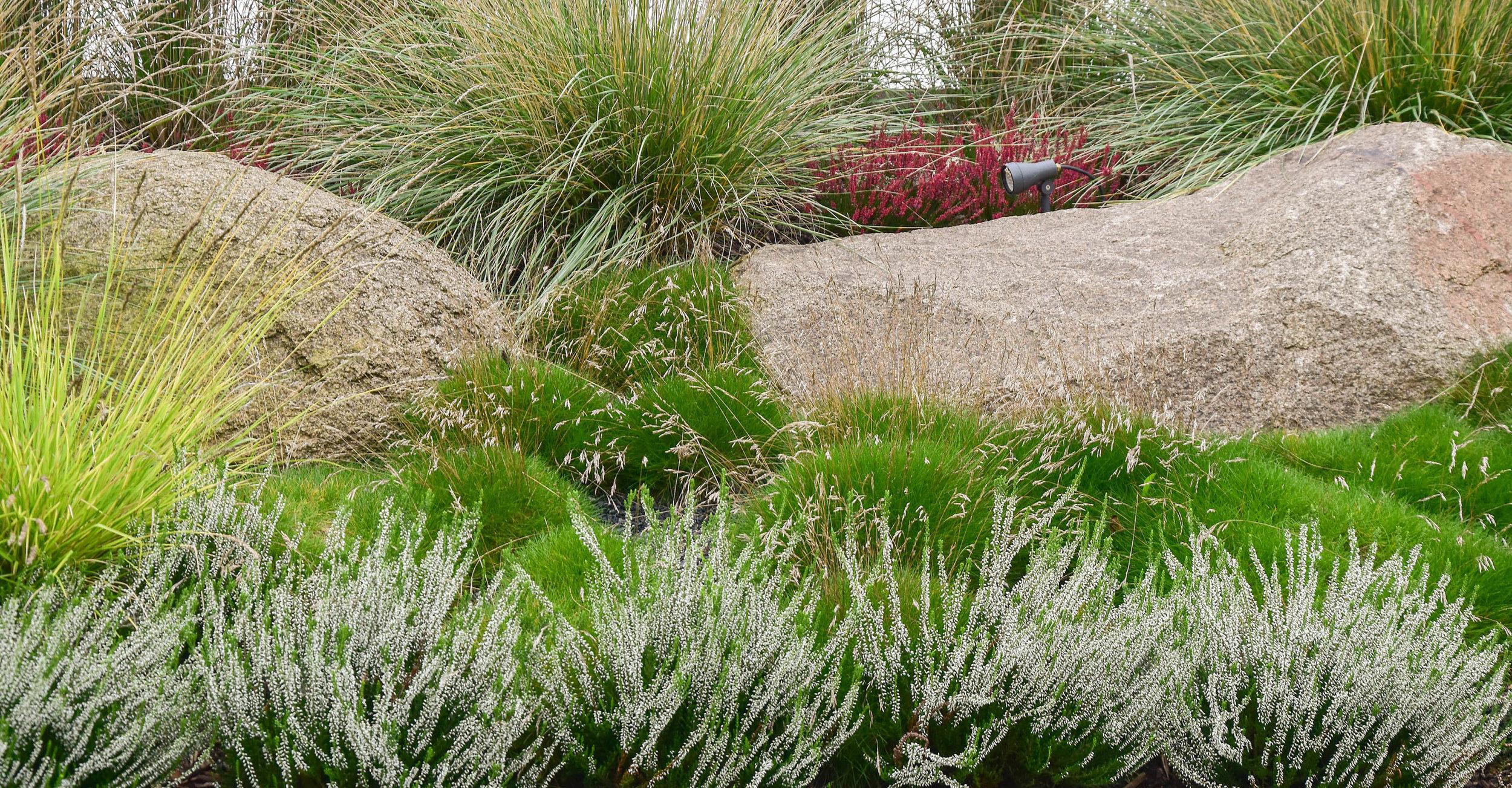 zahrada_kontrastu (9).jpg