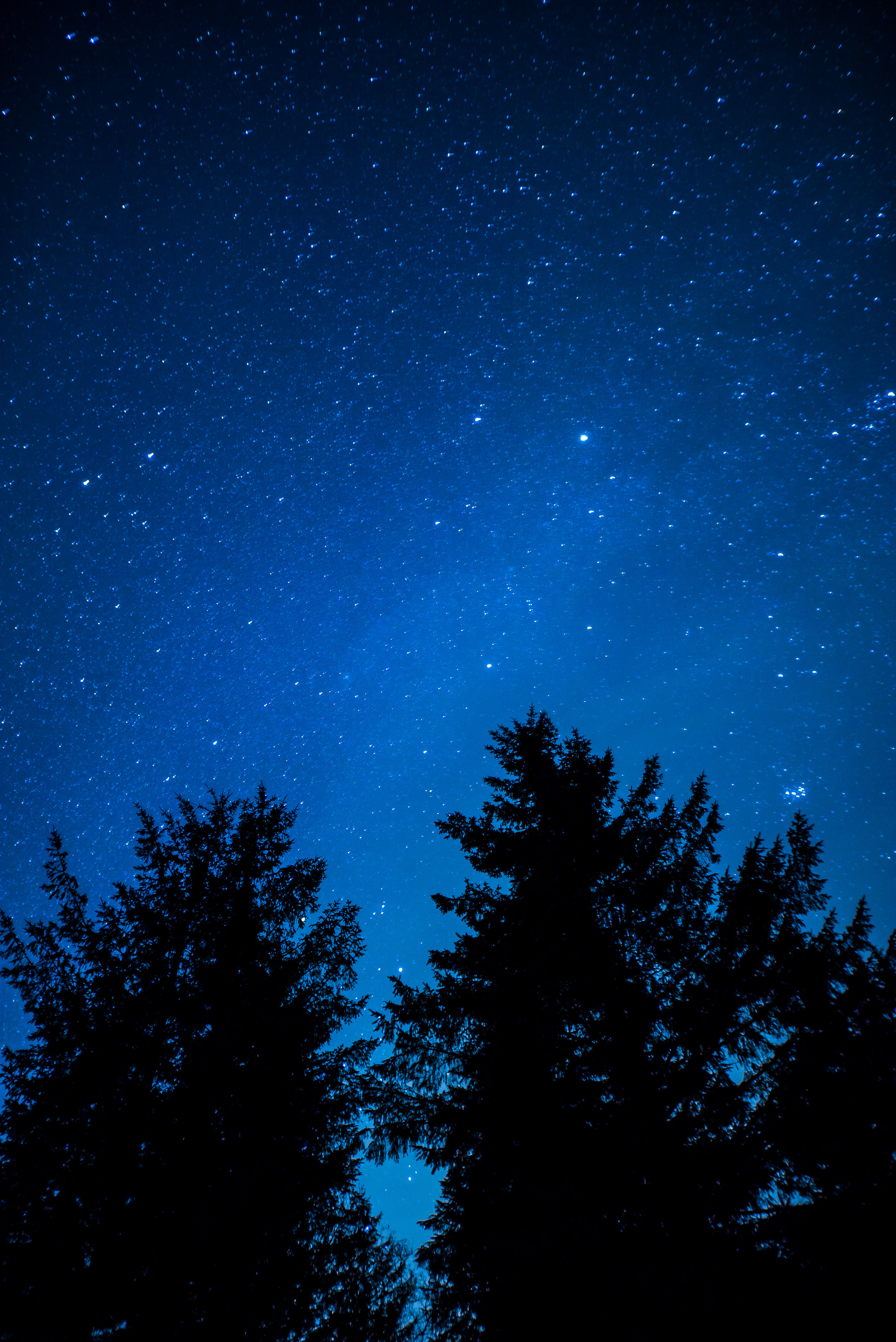 Burrator Stars-22.jpg