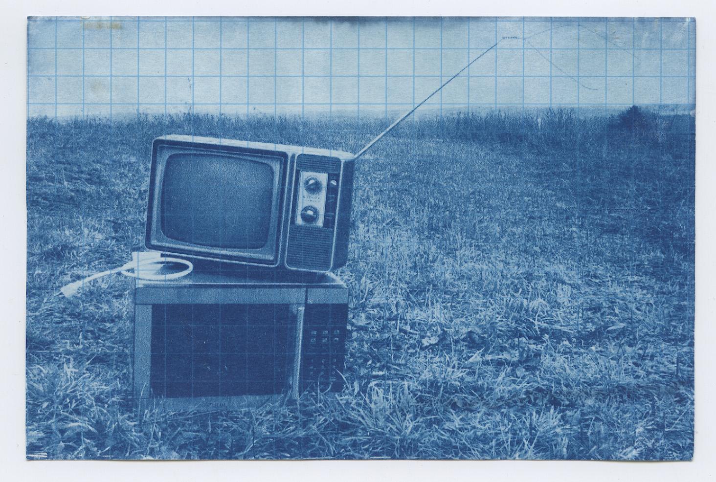 2009, Cyanotype