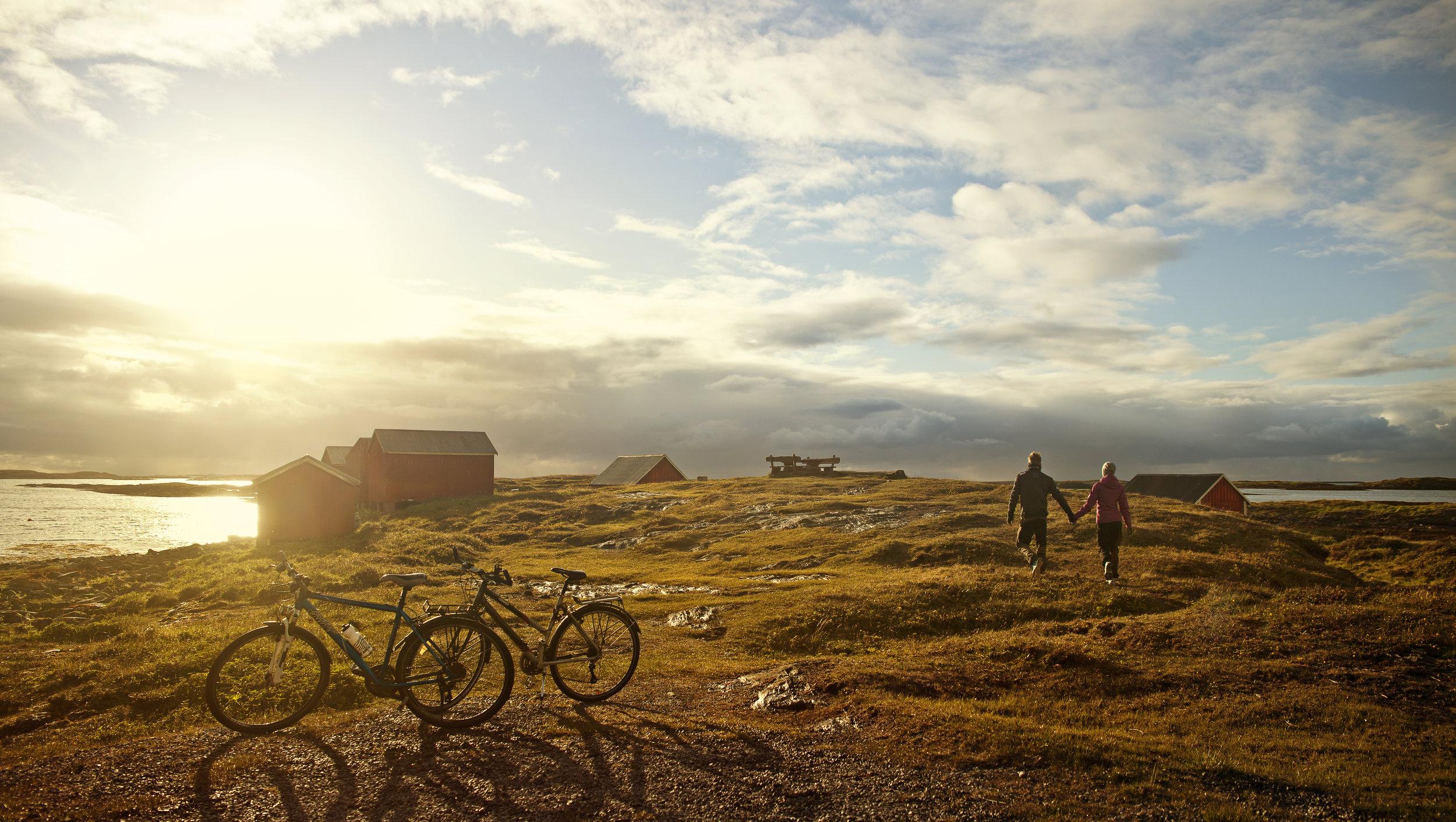 Sykkeltur på Vega. Foto: Hanne Pernille Andersen