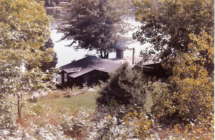 A cottage by a lake, nestled in trees