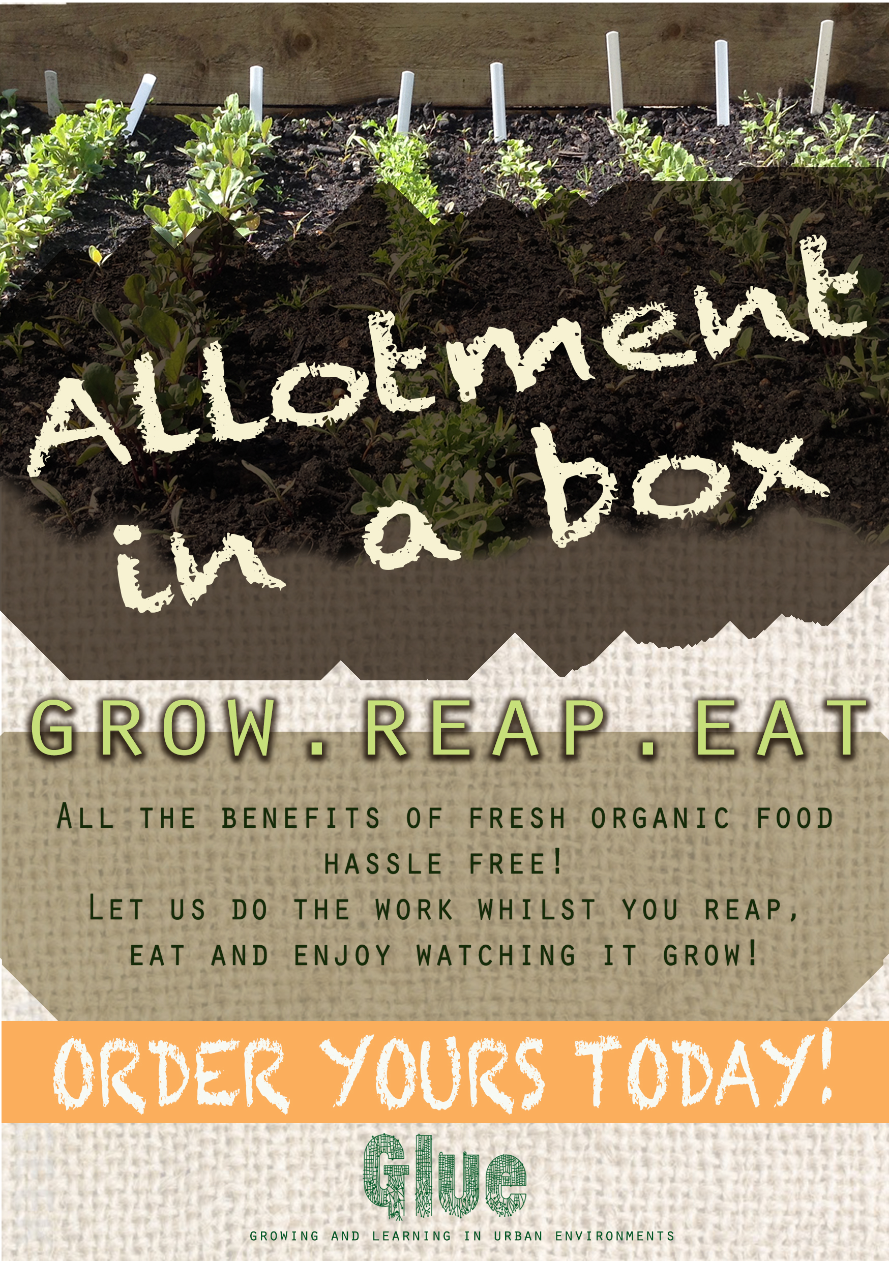 Allotment Box Flyer.jpg