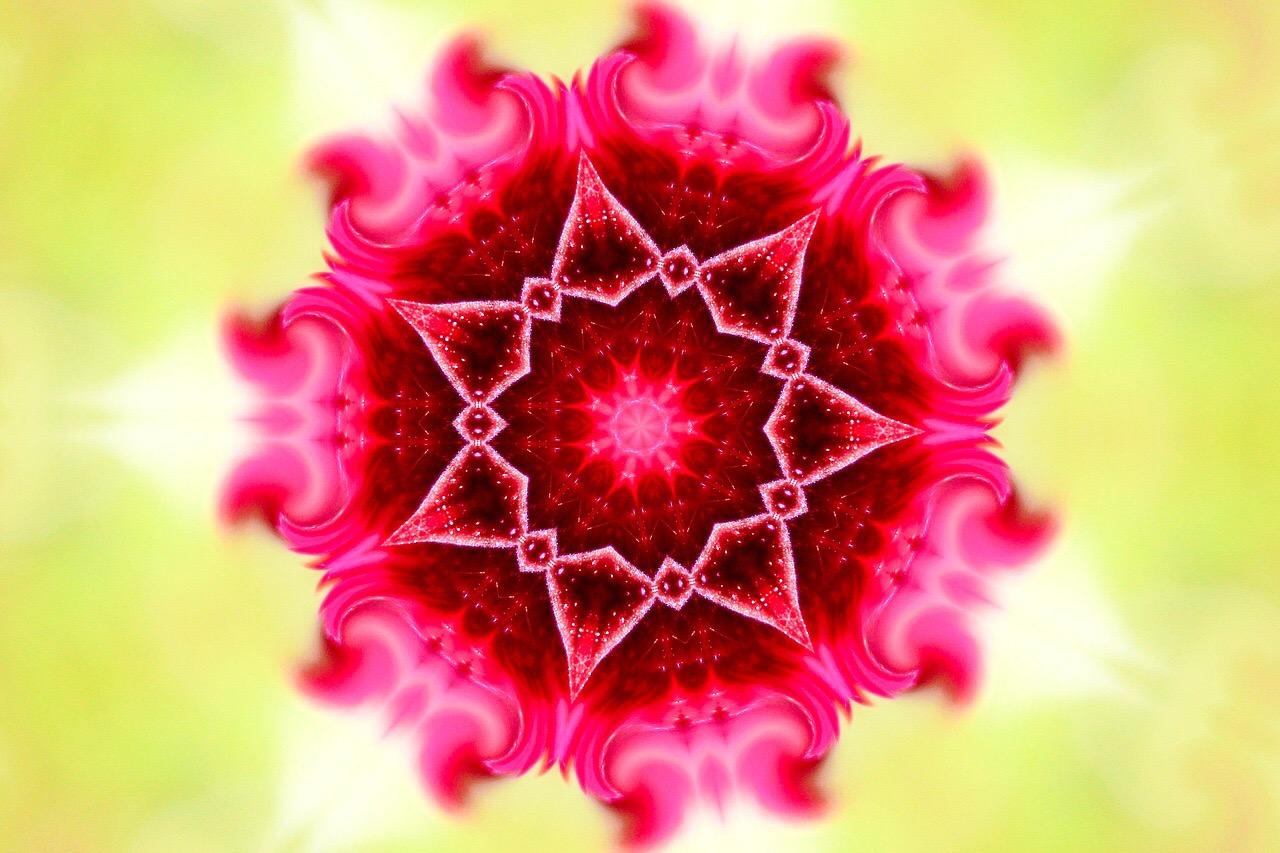 pinkflowerprotectblog.JPG