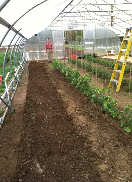 rich rock greenhouse 2013