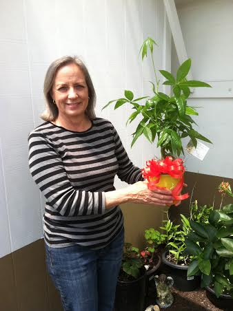 Carol holding the Money Tree, which according to feng shui, will bring good luck and fortune. -