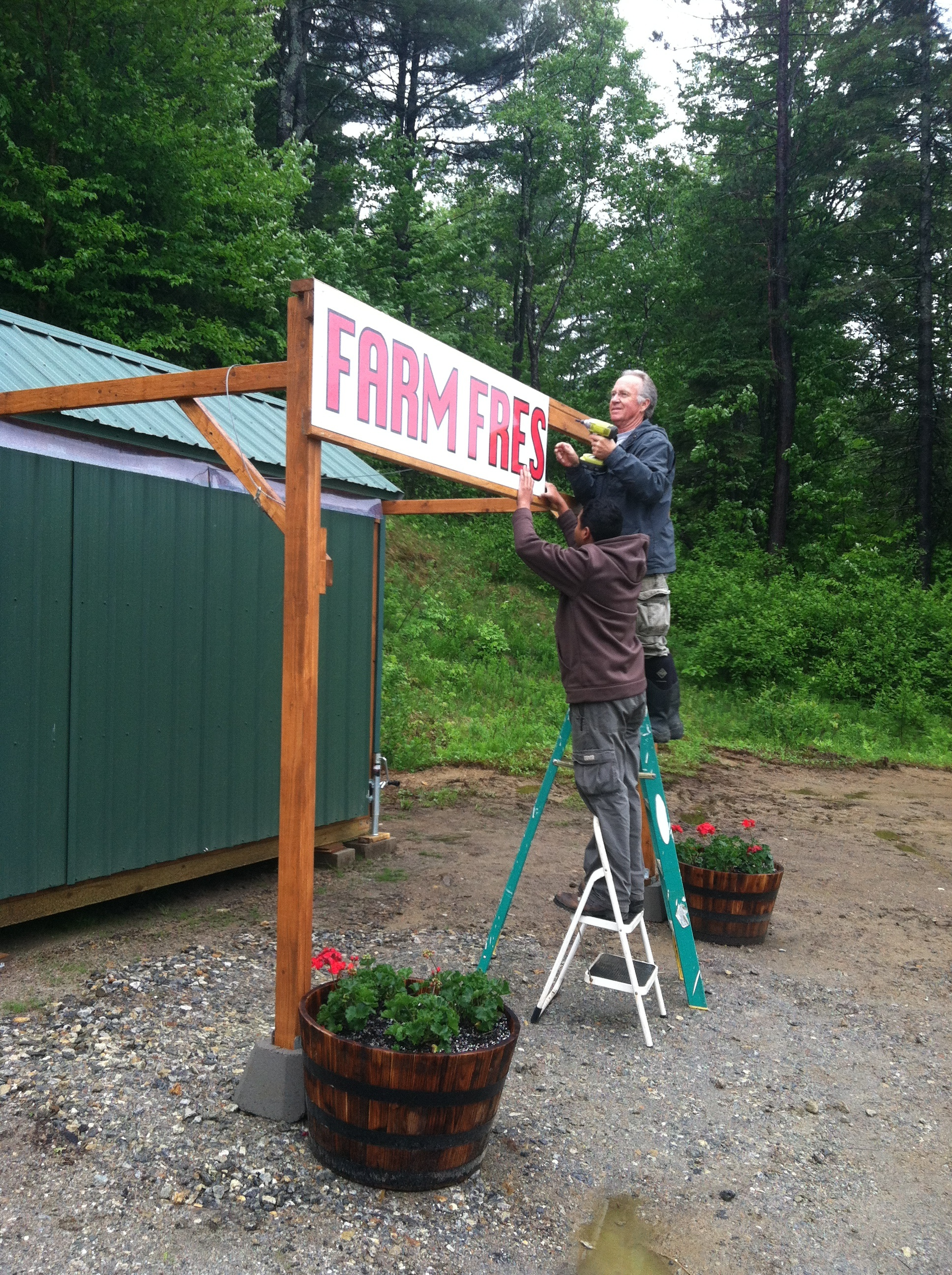 Daniel helping me put up our  new sign.