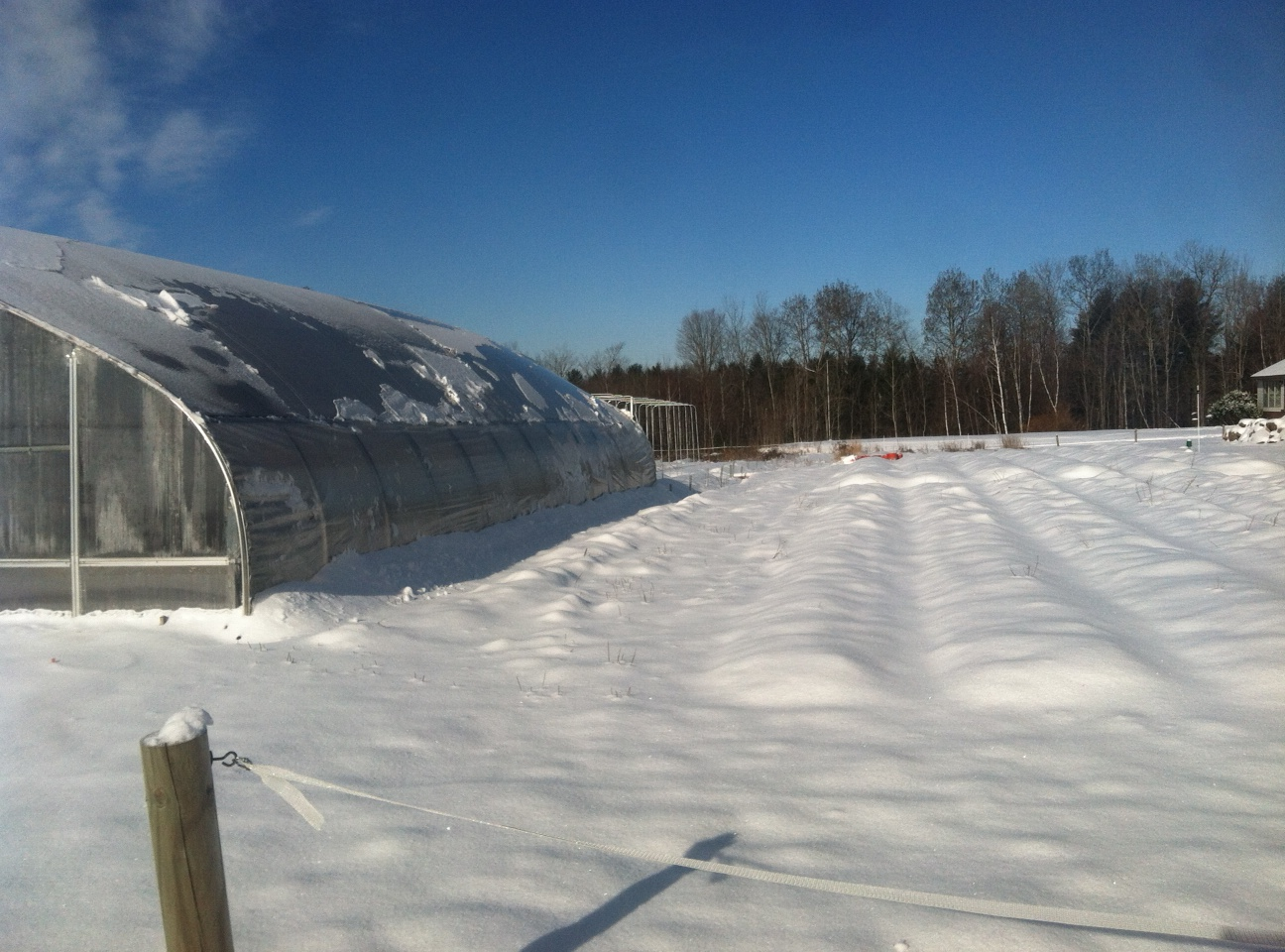 apr-16-snow-3.jpg