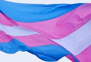 trans flag image.jpeg
