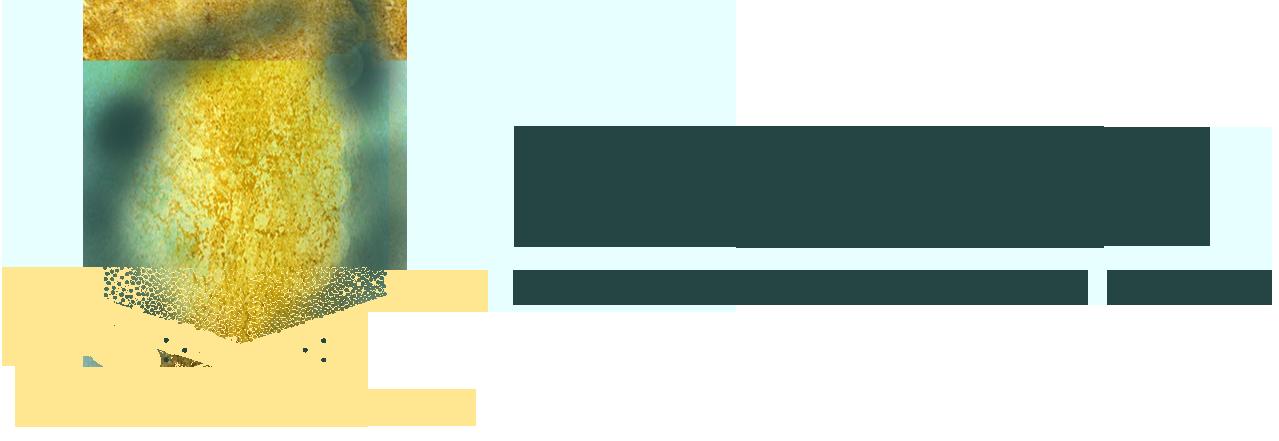 Logo design by Kristin Cash.