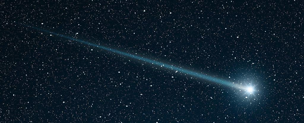 comet-trip-1_1024.jpg