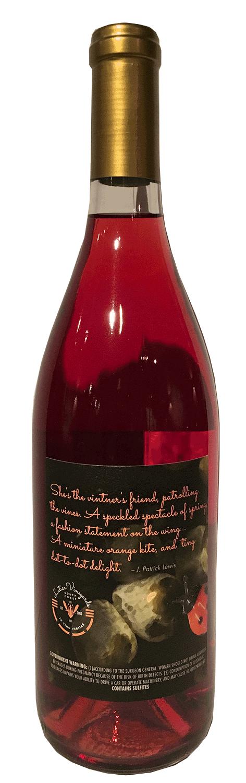 Bottle-Coccinella-back.png