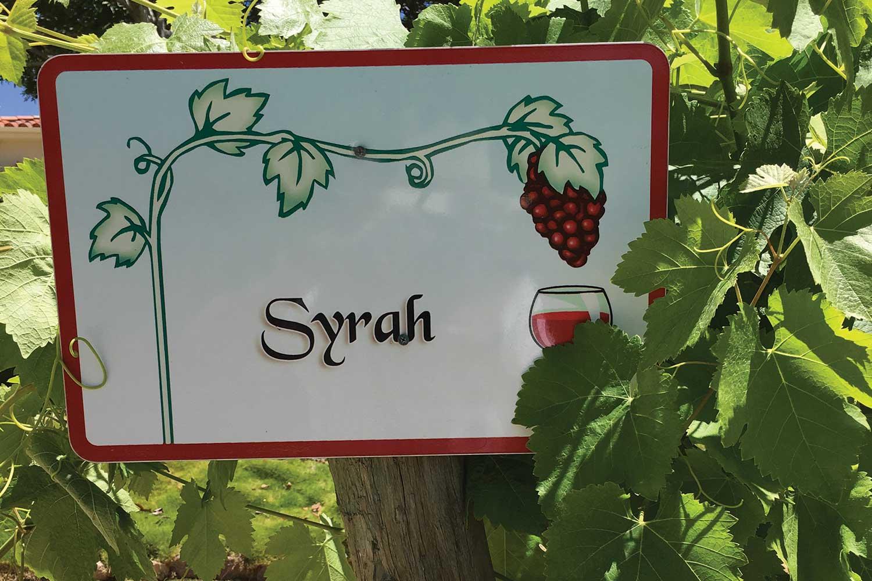 Syrah-sign.jpg