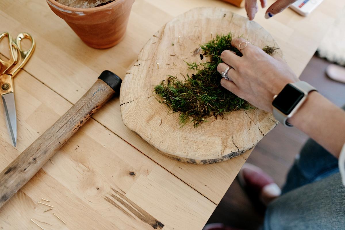 005-staghorn--mounting-a-staghorn--diy--lifestle-blog--interior-design-blog--plant--green-thumb.jpg