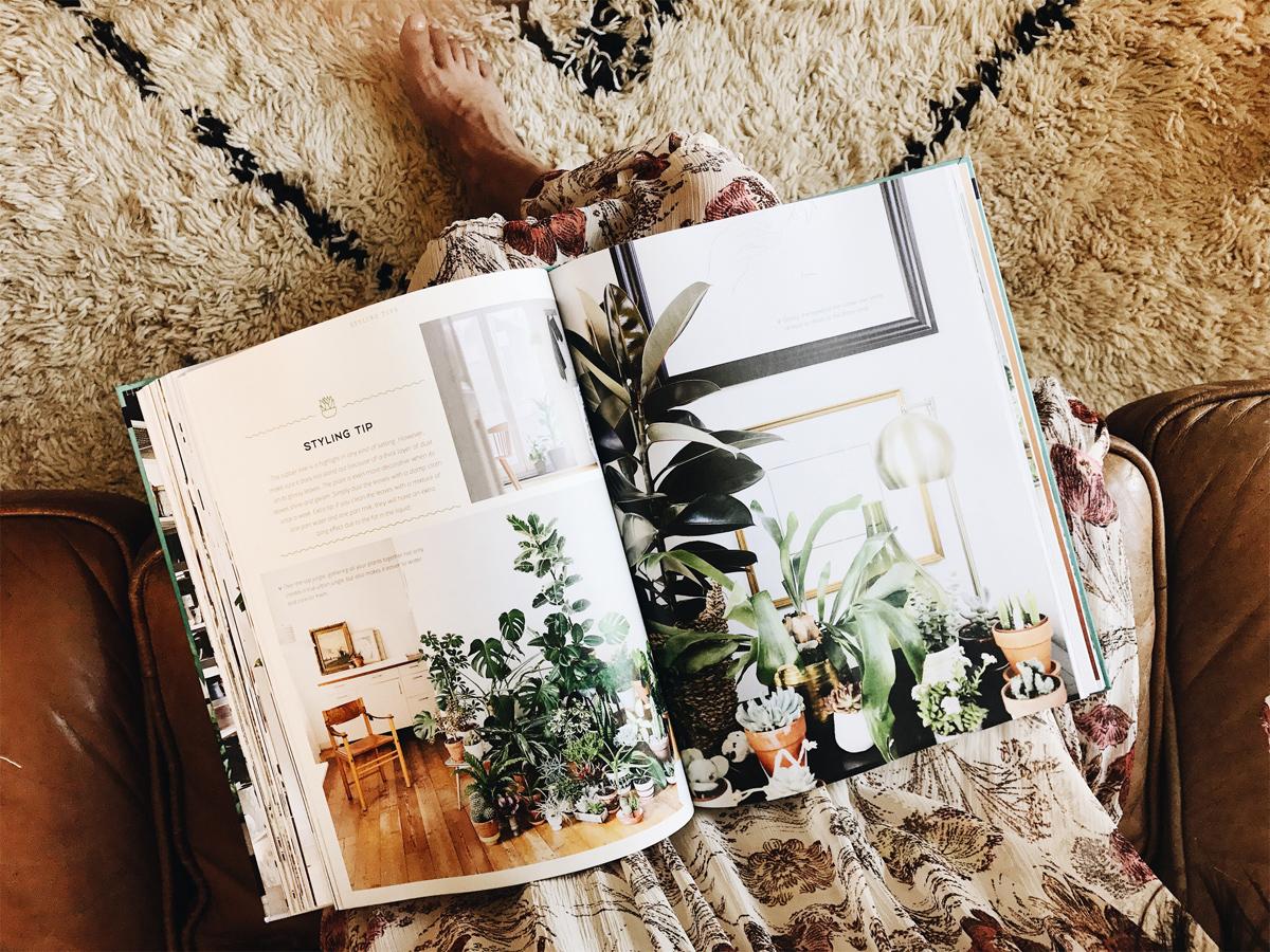 001-lifestlye-blog--blog--coffee--plants--urban-jungle--french-press.jpg