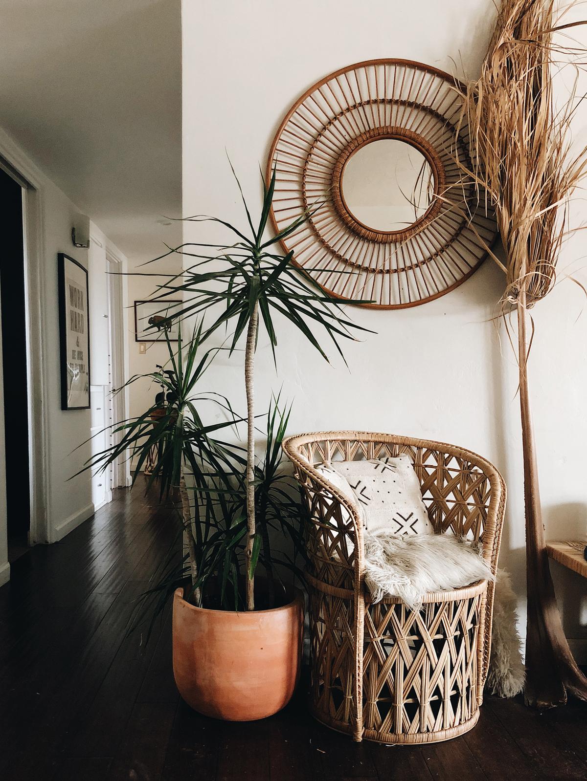 001-lifestyle--bohemian--home-design--albuquerque--plants.jpg