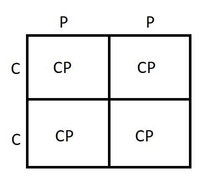 CCXPP Punnent.jpg