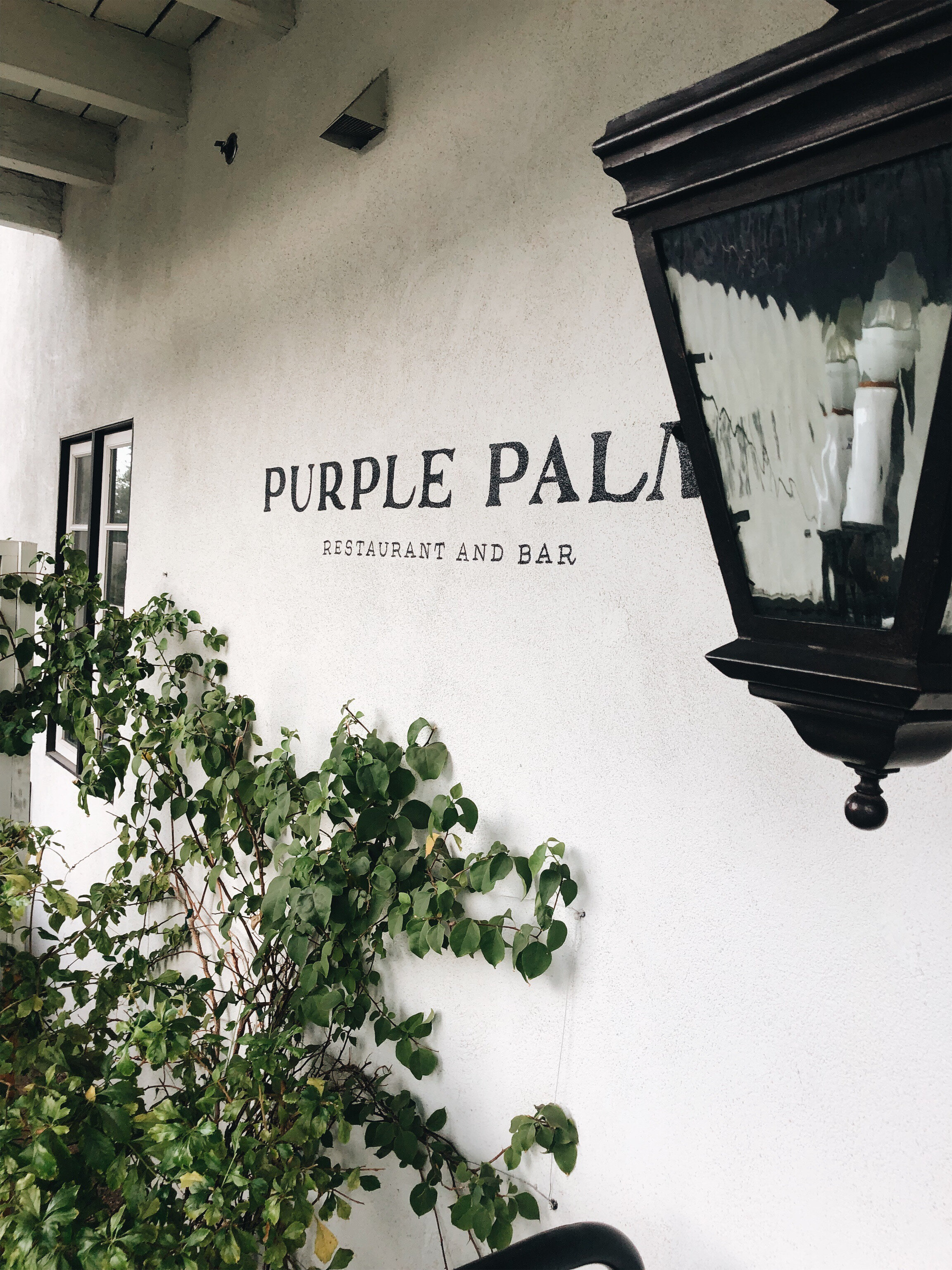 The Purple Palm.jpg